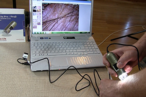 USB microscopes video image